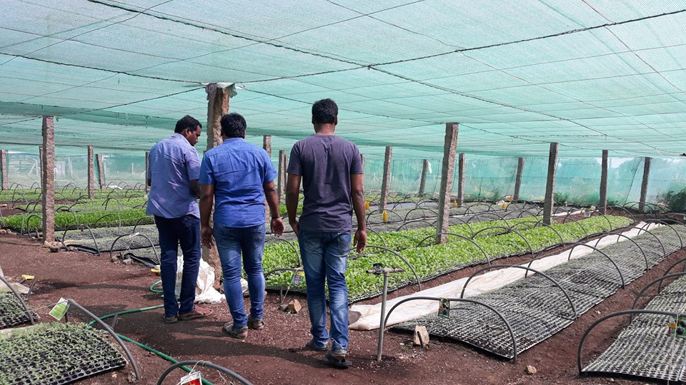 TNews Telugu Jornalist Dinesh Racha and His Friend Mahesh At Our Gopal Vegetable Nursery 2