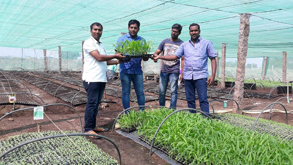 TNews Telugu Jornalist Dinesh Racha and His Friend Mahesh At Our Gopal Vegetable Nursery